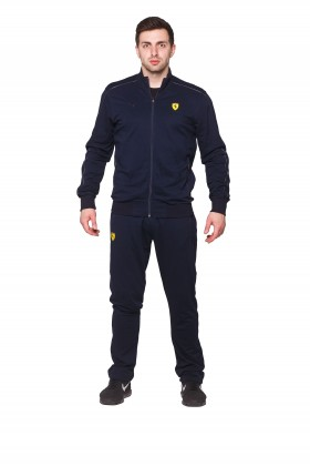 Мужской спортивный костюм Puma 2535 - 1